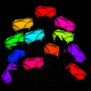 �ٱ�� LED���